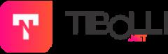 Tibolli.NET Blog